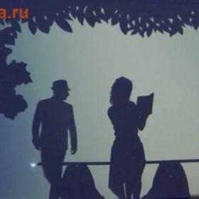 шоу театр теней на свадьбу